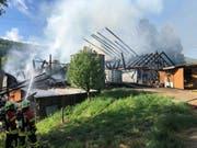 Die Flammen zerstörten den Bauernhof in Zeiningen AG komplett. Der 36-jährige Bewohner erlitt schwere Brandverletzungen. Drei weitere Personen wurden verletzt. (Bild: Handout Kantonspolizei Aargau)