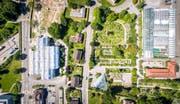 Eine geballte Ladung Natur aus der Luft gesehen: Links die Rorschacher Strasse mit dem neuen Naturmuseum und rechts der Brauerstrasse der Botanische Garten. Neben Beeten und Pflanznischen gut erkennbar ist links unten das dreieckige Alpinhaus, rechts oben die Glaskonstruktion von Tropenhaus, Orchideenhäusern und Anzuchtgärtnerei sowie darunter das Ziegeldach des Gebäudes mit Orangerie und Büros. (Bild: Urs Bucher - 6. Juli 2017)