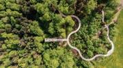 Wie eine Brio-Bahn: Der Pfad – hier aus der Vogelperspektive – schlängelt sich in sanften Windungen durch das Gelände. (Bilder: Urs Bucher)