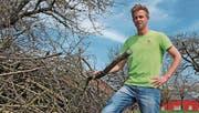 Landwirt Fabian Vollenweider hat einige Asthaufen als Quartiere für Wildbienen aufgebaut.