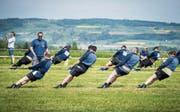 Je nach Gewicht ziehen pro Mannschaft sechs oder sieben Sportler am Seil. (Bild: Reto Martin)