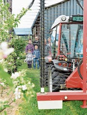 Besucher verfolgen die Vorführung des neuen Fadengeräts zum Ausdünnen der Blüten. (Bild: Donato Caspari)