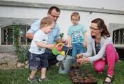 Familie Kollros beim Giessen der Setzlinge: Vater Severin und Mutter Claudia Kollros, Marlon im weissen T-Shirt und Elio. (Bild: Marion Wannemacher (Sarnen, 7. Mai 2018))