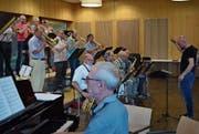 Dirigent Nik Studer holt das Beste aus den Musikern heraus. (Bild: Maria Keller)