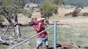 Der Weinfelder Urs Wirth arbeitet an einem Zaun in Australien. (Bild: PD)