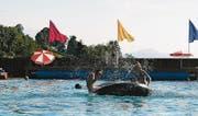 Schon bald kann auch im Freibad Rotenwies in Gais wieder ausgiebig geplanscht werden. Dieses eröffnet am 12. Mai seine Badesaison. (Bild: APZ)