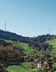 So könnten die Windparkanlagen oberhalb Krinau aussehen. (Bild:)