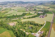 Das Biotop Espel am Rand von Gossau soll von Pro Natura bis Ende 2019 saniert werden. (Bild: Urs Bucher)
