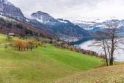 Das Gebiet Teufibalm oberhalb von Vitznau. (Bild: Roger Grütter)