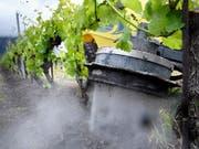 Das Wallis testet eine natürliche Unkrautvertilgungsmethode: Reines Leitungswasser schiesst mit Hochdruck aus einer Maschine vertikal auf den Boden und vernichtet dabei unerwünschtes Grünzeug. (Bild: KEYSTONE/LAURENT GILLIERON)