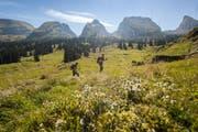 Die Landschaft im Toggenburg lädt zum Wandern ein. Erlebt der Gast einen tollen Tag, erzählt er es weiter und macht so beste Werbung. (Bild: PD)