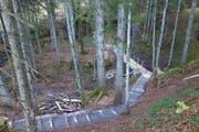 Moorschutz und ehrenamtlicher Einsatz: Die Jury zeichnete die Verlegung eines Teilstücks des Wanderwegs Wolzenalp-Ijental aus. (Bild: PD)