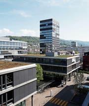 Blick von einem Balkon in der Überbauung Kistenfabrik (grosses Bild). Die Aussicht ist schön, auf den Balkonen aber gibt es diverse Schäden. (Bilder: Stefan Kaiser (Zug, 24. April 2018))