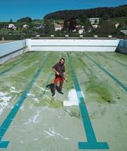 Aus Grün wird Weiss: Badmeister Hans Salzmann reinigt den Boden des Schwimmbeckens. (Bilder: Angelina Donati)