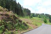 Die zweite Etappe der Umfahrung Wattwil soll bis 2022 gebaut werden. Vor kurzem wurden bei Scheftenau oberhalb der Strasse nach Ebnat-Kappel Bäume gefällt, die der neuen Strasse im Weg stehen. Die Rodung ist also nicht das Werk von Burglind oder eines der anderen Stürme, die im letzten Winter durchs Toggenburg fegten. (Bild: Martin Knoepfel)
