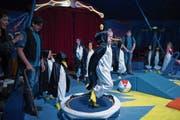 Die Pinguine sind mitten im Probefieber. (Bilder Corinne Glanzmann, Lungern, 16. Mai 2018)