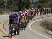 Das Feld bei der Kalifornien-Rundfahrt (Bild: KEYSTONE/AP/MARK J. TERRILL)