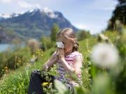 Allergikerinnen und Allergiker sollen sich künftig jederzeit darüber informieren können, wo gerade welche Pollen fliegen. (Bild: KEYSTONE/GAETAN BALLY)