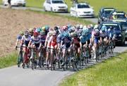 Das Frauenrennen am GP Cham-Hagendorn gehört zur höchsten Kategorie. (Stefan Kaiser, 21. Mai 2017).