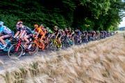 Die Tour de Suisse fährt bald durch die Region. (Bild: PD)