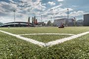 Eines der Spielfelder im Espenmoos. Hinten links die Tribüne.