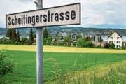 Die Scheitingerwiese: Beste Lage mit Blick auf den Untersee. (Bild: Reto Martin)