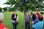 Monique Trummer präsentiert den Stadtbaum. (Bild: Adrian Lemmenmeier)