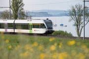 Ein Thurbo-Zug fährt dem Bodensee entlang. (Bild: Ralph Ribi)