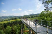 Bombastisch gestartet: In den ersten zehn Tagen besuchten über 10'000 Personen den Baumwipfelpfad in Mogelsberg. (Bild: Keystone)