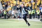Flippt aus: Ludovic Magnin ist in seinem ersten Finalspiel als Chefcoach im FCZ gleich erfolgreich (Bild: Daniela Frutiger / Freshfocus)