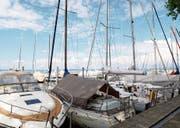 Jeder Zentimeter wird genutzt: Der Rorschacher Segelhafen ist rappelvoll. (Bild: Rebecca Frei)