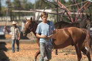 Charlie Plummer als Charley in «Lean On Pete» von Andrew Haigh (Bild: Filmcoopi).