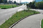 An der Kreuzung Tösstalstrasse/Stationsstrasse ist bereits eine Blumenwiese zu sehen. (Bild: Roman Scherrer)