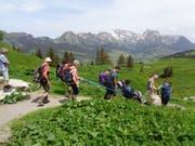 Vorsichtig wird der Trekkingrollstuhl von Freiwilligen über das holprige Gelände gefahren. (Bilder: PD)