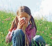 Triefende Nase: Die Pollenbelastung ist derzeit hoch. (Bild: Fotolia)