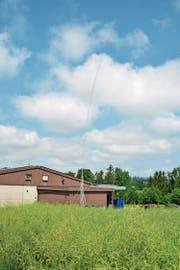 Das Visier zeigt, wie hoch die Mobilfunkantenne auf der Rückseite der Ostseite der Hess Druck AG in die Luft ragen würde. (Bild: Mario Testa)