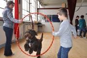 Dank der Unterstützung der Zuger Kantonalbank durften acht Kinder mit Behinderung einen Tag im Kinder- und Jugendzirkus Zug verbringen, wo sie unter anderem lernten, mit Hunden Kunststücke vorzuführen. (Bild: PD)