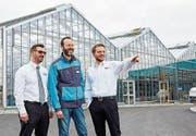 Raphael Heusi, Michael Brunschweiler und Bruno Sutter, die Geschäftsführer von Lumimart, Coop Bau+Hobby und Interdiscount (v.l), freuen sich auf die Eröffnung in Rickenbach. (Bild: PD)