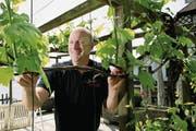 Freut sich über das schnelle Wachstum der Reben: Karl Sigrist auf seinem Weingut in Meggen. Bild: Corinne Glanzmann (7. Mai 2018)