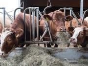 Während jedes Jahr Bauernhöfe in der Schweiz verschwinden, setzten immer mehr Betriebe auf die biologische Produktion. (Themenbild) (Bild: KEYSTONE/PETER SCHNEIDER)