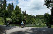 Es herrscht immer mehr Betrieb im Steinhauserwald. Auf dem Bild sind Velofahrer beim Waldsee zu sehen. (Bild: Stefan Kaiser (Steinhausen, 29 Mai 2018))