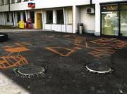 Diese Kritzeleien sind kein Vandalismus. (Bild: Landespolizei Liechtenstein)