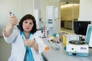 Ärztin Monica Braisch untersucht Blutproben im Ostschweizer Blutspendezentrum an der Rorschacher Strasse 111. (Bild: Ralph Ribi)