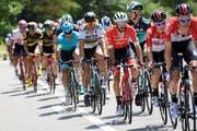 Die Tour de Suisse findet findet vom 9. bis 17. Juni statt. (Bild: Gian Ehrenzeller/Keystone, 10. Juni 2018)