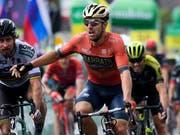 Der Italiener Sonny Colbrelli (vorne) freut sich in Gansingen über seinen Etappensieg im Sprint (Bild: KEYSTONE/GIAN EHRENZELLER)
