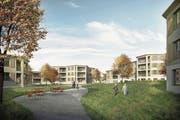Die Visualisierung zeigt, wie die Überbauung der Wohnbaugenossenschaft Linde aussehen könnte. (Bild: PD)