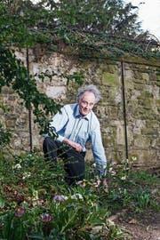Von Pflanzen seit seiner Kindheit fasziniert: Robin Lane Fox an der Arbeit in seinem privaten Garten (Bild: Andrea Artz/Laif)