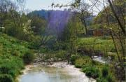 Aus dem Reuss-Rotseekanal ist ein naturnaher Bach geworden. (Bild: pd)