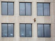Ein wahrer Kletterkünstler: Ein Waschbär klettert an der Aussenwand des UBS-Tower im US-Bundesstaat Minnesota 23 Stockwerke hinauf bis aufs Dach. (Bild: KEYSTONE/AP Minnesota Public Radio/EVAN FROST)