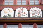 Der Schwiegervater liess Johannes Hugentobler freie Hand bei der Gestaltung der Fassade der Drogerie Löwen in Appenzell (Bild: Benjamin Manser)